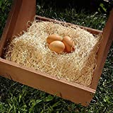 Petmate Precision Pet Excelsior Nesting Pads