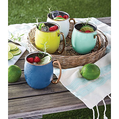 Member's Mark Colorful Moscow Mule Mugs, 4 Pack - Cool by Member's Mark