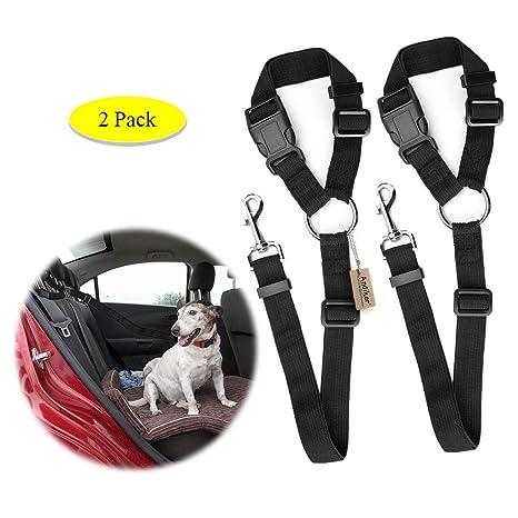 Andiker - Cinturón de Seguridad para Perro, Ajustable, de Nailon ...