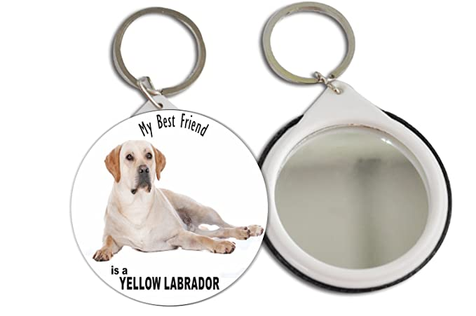 Rikki Knight My Best Friend Is A Yellow La Dor Dog Design Mirror Button 2 25 Inch Key