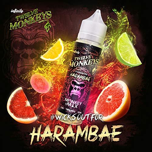 Twelve Monkeys Harambae Liquid