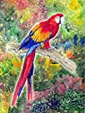 Cheap Caroline's Treasures 8603CHF Parrot Head Flag Canvas, Large, Multicolor