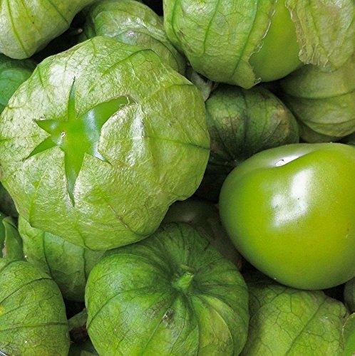 Grande Rio Verde Tomatillo (50 seeds) Proven Ethnic Giant! by zellajake (Image #3)