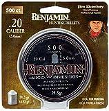 Benjamin P50 .20-Calbier Cylindrical