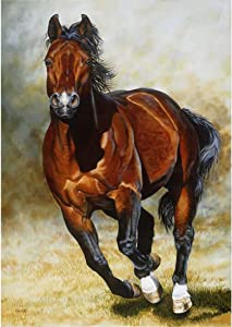 Running Horse DIY 5D Diamond Painting Kits for Adults Full Drill Horse Diamond Painting by Number Kits Crystal Rhinestone Embroidery Arts Crafts for Home Wall Decor (Horse,12X16 inches)