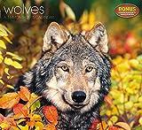 Wolves Wall Calendar (2015)