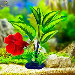 Lifelike Amazon Sword Plant --- Fish Tank Plastic Decoration - Serves as Betta's Playground - Provides Hiding Spot for the Young - Creates Beautiful Aquatic Background decor