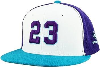 4d8342287d1 Number  23 White Purple Aqua Visor Retro Snapback Hat Cap X Air Jordan  Hornets Color