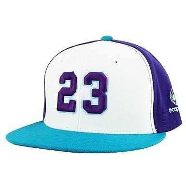 Number  23 White Purple Aqua Visor Retro Snapback Hat Cap X Air Jordan  Hornets Color afe62242cf1