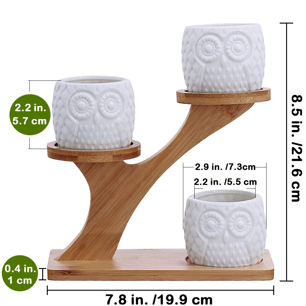 3pcs Owl Succulent Pots with 3 Tier Bamboo Saucers Stand Holder - White Modern Decorative Ceramic Flower Planter Plant Pot with Drainage - Home Office Desk Garden Mini Cactus Pot Indoor Decoration by besttoyhome (Image #6)