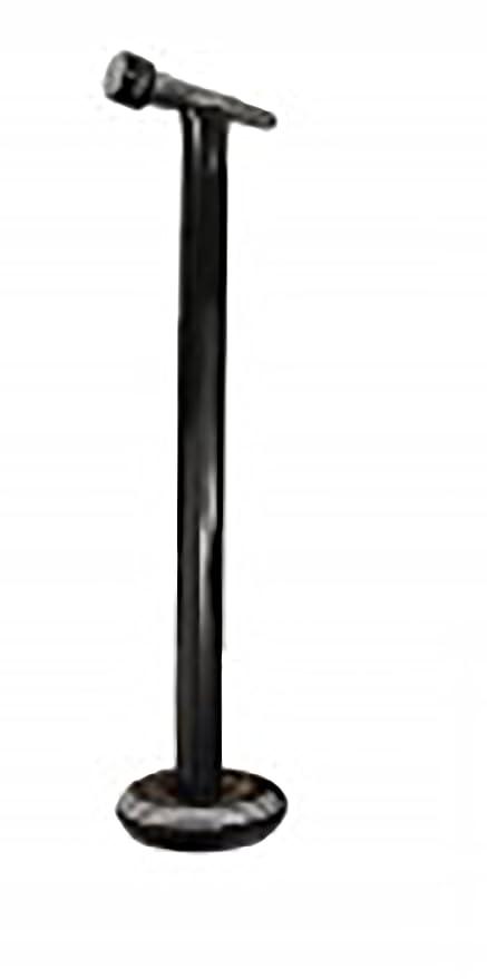 Soporte inflable para micrófono: Amazon.es: Hogar
