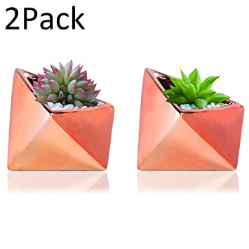 Flower Pots Copper Planter Ceramic Planters/Cactus Plant Pot Succulent  Plants Set Of 2 (