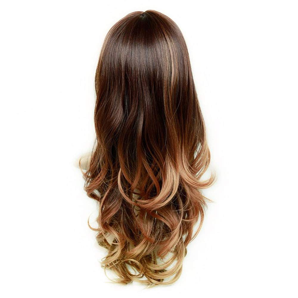 Amazoncom Aisi Hair Curly Wavy Long Hair Brown Mixed Blond Wig