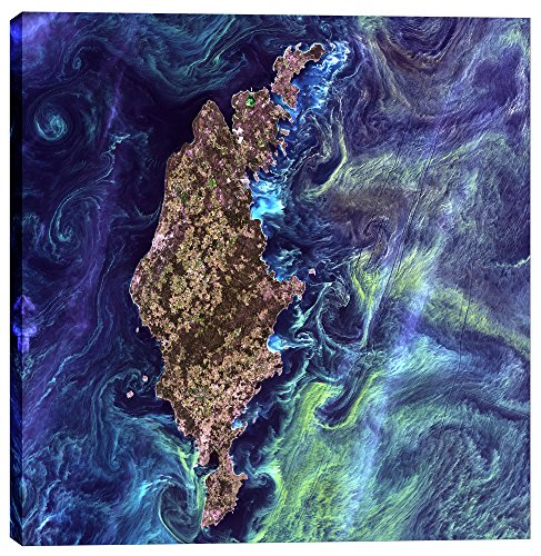 Epic Graffiti Earth As Art: Van Gogh from Space Giclee Canvas Wall, 37'' x 37'' by Epic Graffiti