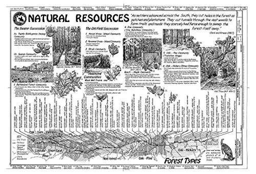 (Historic Pictoric Blueprint Diagram Natural Resources - Natchez Trace Parkway, Located Between Natchez, MS & Nashville, TN, Tupelo, Lee County, MS 44in x 30in)