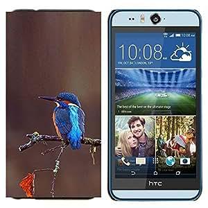 TECHCASE---Cubierta de la caja de protección para la piel dura ** HTC Desire Eye ( M910x ) ** --rama marrón azul tropical del pájaro cantante