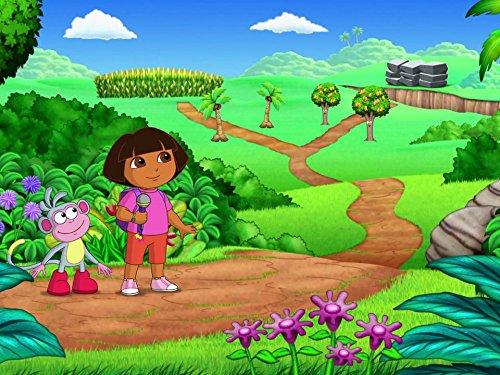 Dora Rocks! (Dora Rocks)