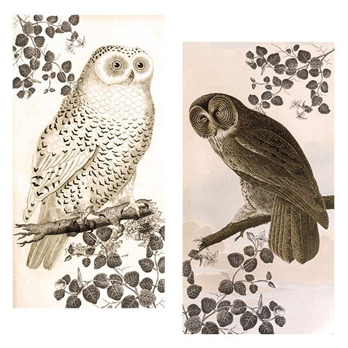 Decorative Matches, set of 2 matchboxes, Vintage Owl Decorative Matches