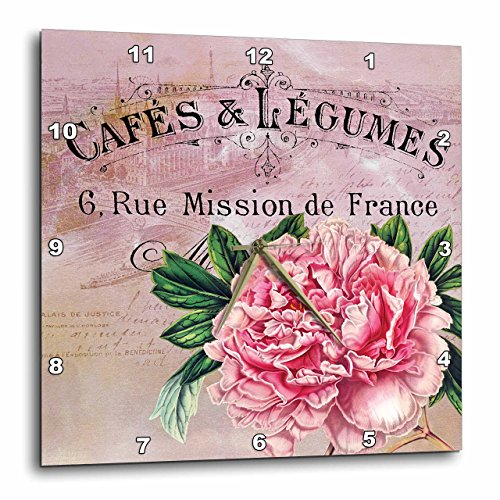 (3dRose French Vintage Pink Peony Botanical - Wall Clock, 10 by 10-Inch (DPP_123376_1))
