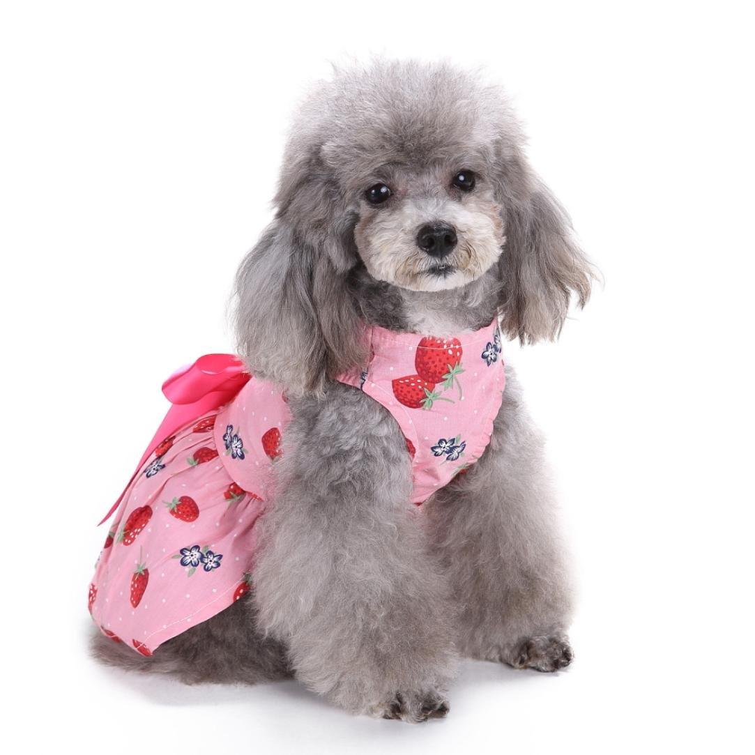 Amazon.com: Cachorro Sweetie vestido, ooeoo perro fresa lazo ...