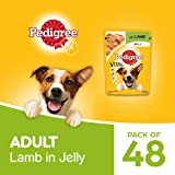 Pedigree Vital Protection Adult Wet Valentines Gift Dog Food, Lamb in Jelly, 48 Pouches (48x100g)