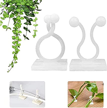 100Pcs Self-Adhesive Plant Climbing Wall Fixture Clips Home Vine Holder Hook