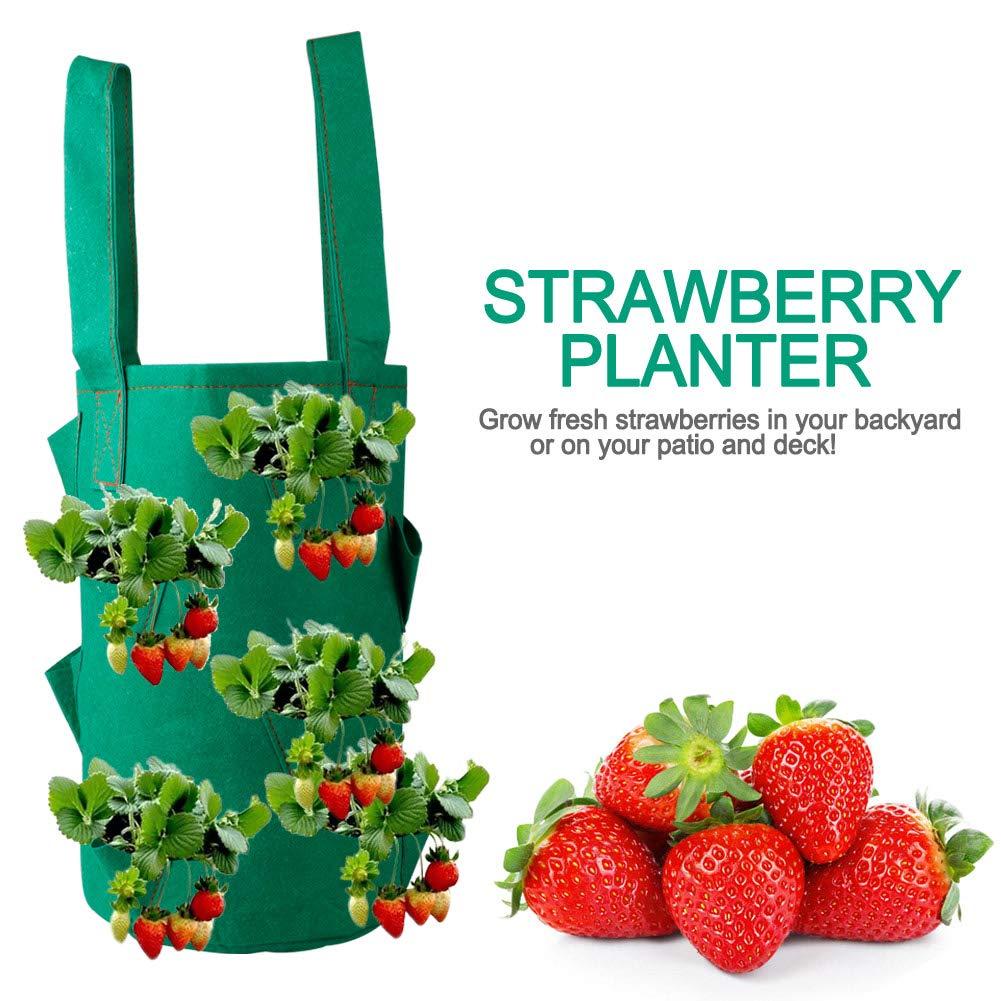 2 St/ück Blumen Kr/äuter kgjsdf Erdbeer-Pflanztasche mit Griffen und 11 Taschen f/ür Erdbeeren