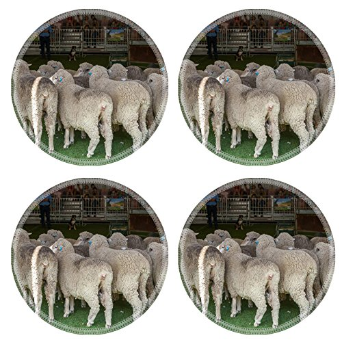 liili-round-coasters-2015-sydney-royal-easter-show-natural-rubber-material-image-16958187696