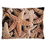 Indoor Luxury Plush Dog Bed Collection Of Starfish