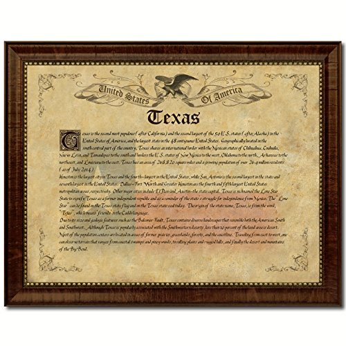 Texas Vintage Photo (Texas State Vintage History Flag Art Custom Picture Frame Original Classic Collectible Office Home Decor Interior)