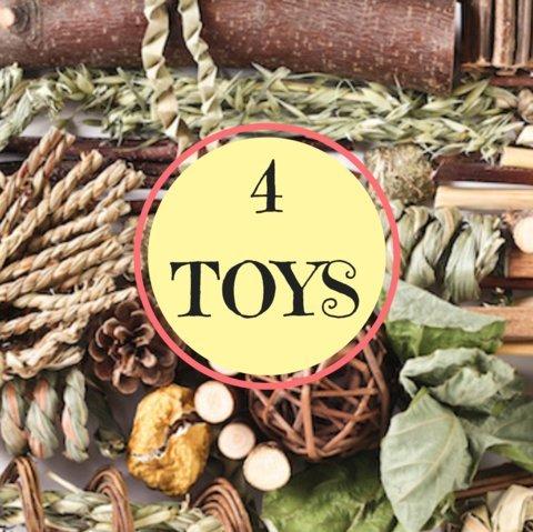 4 Toy Sampler! ()