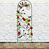 Amagabeli Garden Trellis for Climbing Plants 46'' x 15'' Rustproof Black Sturdy Iron Potted Support Vines Vegetable Flower Patio Metal Wire Lattices Grid Trellises for Ivy Roses Grape Cucumber Clematis