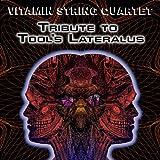 Vitamin String Quartet Tribute to Tool's Lateralus