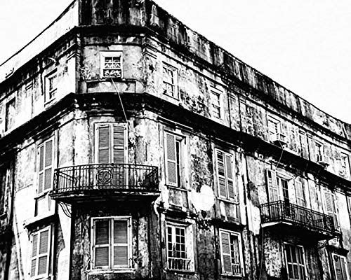 Black Photos Architectural White (New Orleans Black and White Photography Architectural photo 8x10 inch Print)