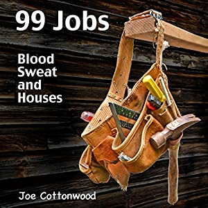 99 Jobs Audiobook