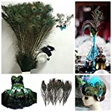 Real Natural Peacock Feathers 10-12'' (25~30cm) Great Wedding Christmas Halloween Decorations House Decoration (50)
