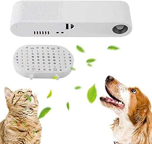 FairOnly Purificador de Aire Inteligente, eliminador de olores para Mascotas, Gatos, Perros, esterilización Interior (sin batería) Creative Life: Amazon.es: Productos para mascotas