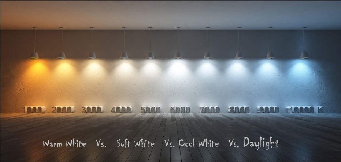 Pack of 8 F6T5/CW 6-Watt T5 9 Inch Linear Fluorescent Light Bulbs, 4100K Cool White