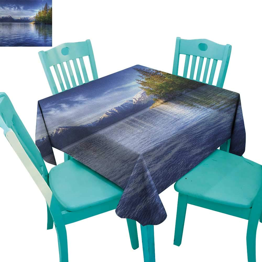 "MartinDecor Alaska Dinner Picnic Table Cloth Turnagain Arm of The Cook Inlet Anchorage Idyllic Lakeside Photography 54""x54"",Suitable for Kitchen, dustproof Desktop Decoration"