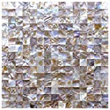 Art3d Peel and Stick Mother of Pearl Shell Tile for Kitchen Backsplashes, 12'' x 12'' Colorful (6 Pack)
