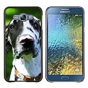 Caucho caso de Shell duro de la cubierta de accesorios de protecci¨®n BY RAYDREAMMM - Samsung Galaxy E7 E700 - Gran Dan¨¦s d¨¢lmata Spots perro