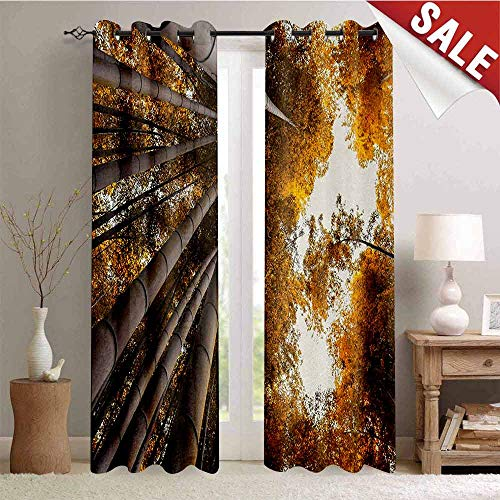 Hengshu Bamboo Room Darkening Wide Curtains Bottom to Top Bamboo Grove Fall Landscape Potential for Improvement Symbol Print Waterproof Window Curtain W84 x L108 Inch Yellow Brown
