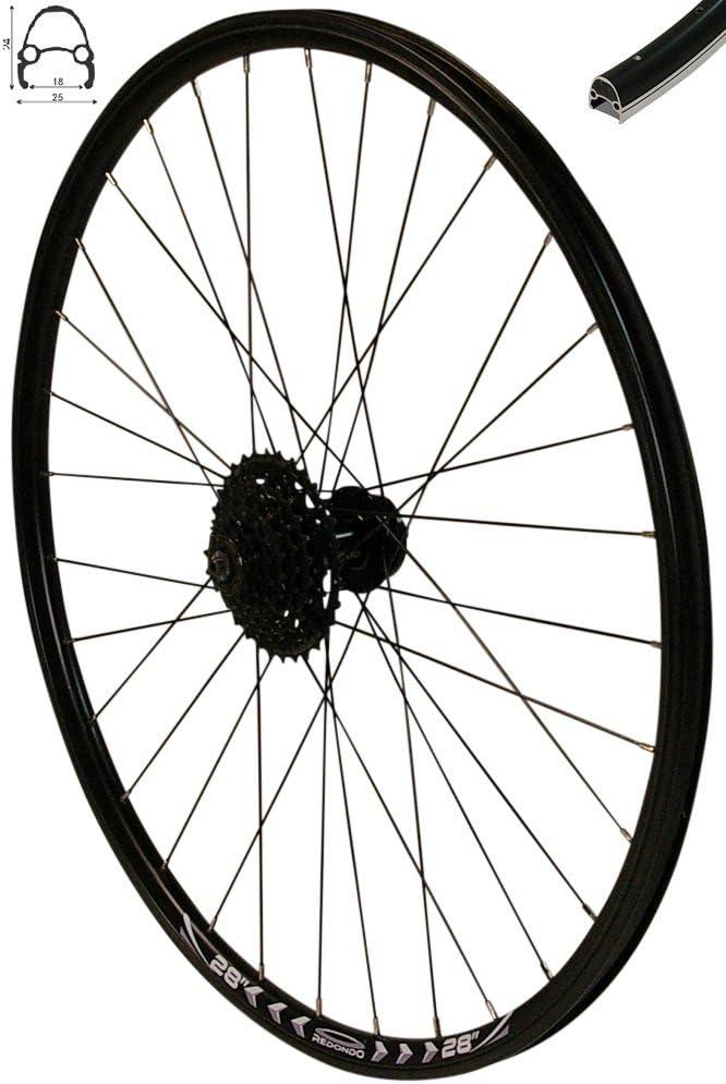rt Bike Speichenschutz für Fahrrad Hinterrad Freilauf Kassette BR