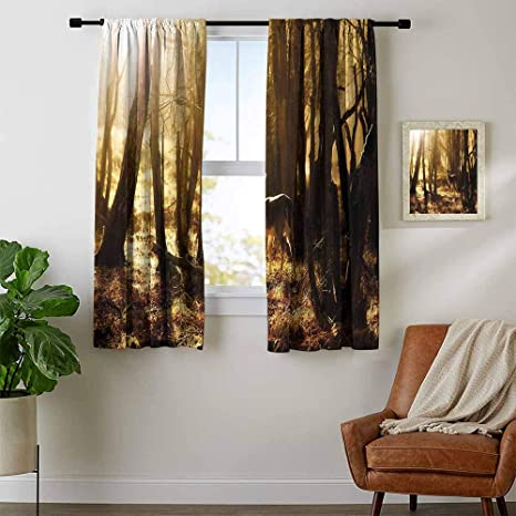 Mozenou Cabin Decor, Kitchen Curtains and Valances Set, Young Deer at  Sunset in The Forest National Park Outdoors Netherlands Photo, Window  Curtain ...