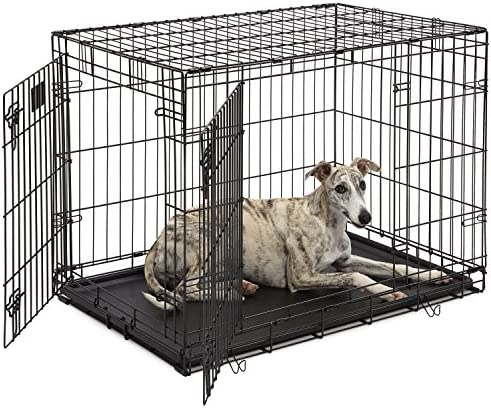 Dog Crate MidWest Life Stages 36 Double Door Folding Metal Dog Crate Divider Panel, Floor Protecting Feet, Leak-Proof Dog Tray 36L x 24W x 27H Inches, Intermediate Dog Breed