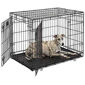midwest life stages heavyduty folding metal dog crates single door u0026 double door dog crates w divider panel floor protecting feet u0026 leakproof