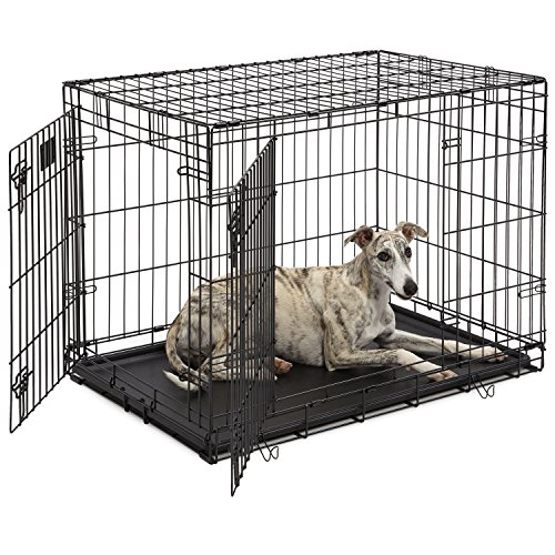 Dog Crate | MidWest Life Stages 36' Double Door Folding Metal Dog Crate | Divider Panel, Floor Protecting Feet, Leak-Proof Dog Tray | 36L x 24W x 27H Inches, Intermediate Dog Breed