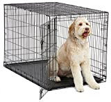 "MidWest iCrate 48"" Folding Metal Dog Crate w/ Divider Panel, Floor Protecting ""Roller"" Feet & Leak-Proof Plastic Tray; 48L x 30W x 33H Inches, XL Dog Breed"