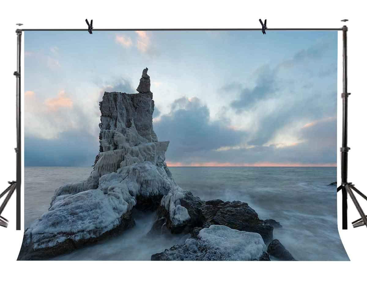 LYLYCTY 7x5フィート 天然石背景 素晴らしいアート 自然石 写真背景 写真 背景 小道具 スタジオ 屋内装飾 LYXC165   B07HFTWJRM