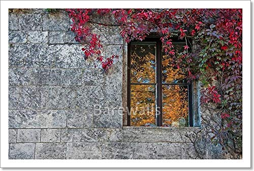 barewalls Window Paper Print Wall Art (10in. x 15in.)